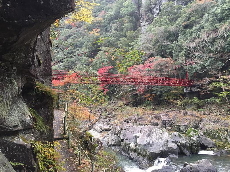 急流をまたぐ赤く美しい紅葉橋